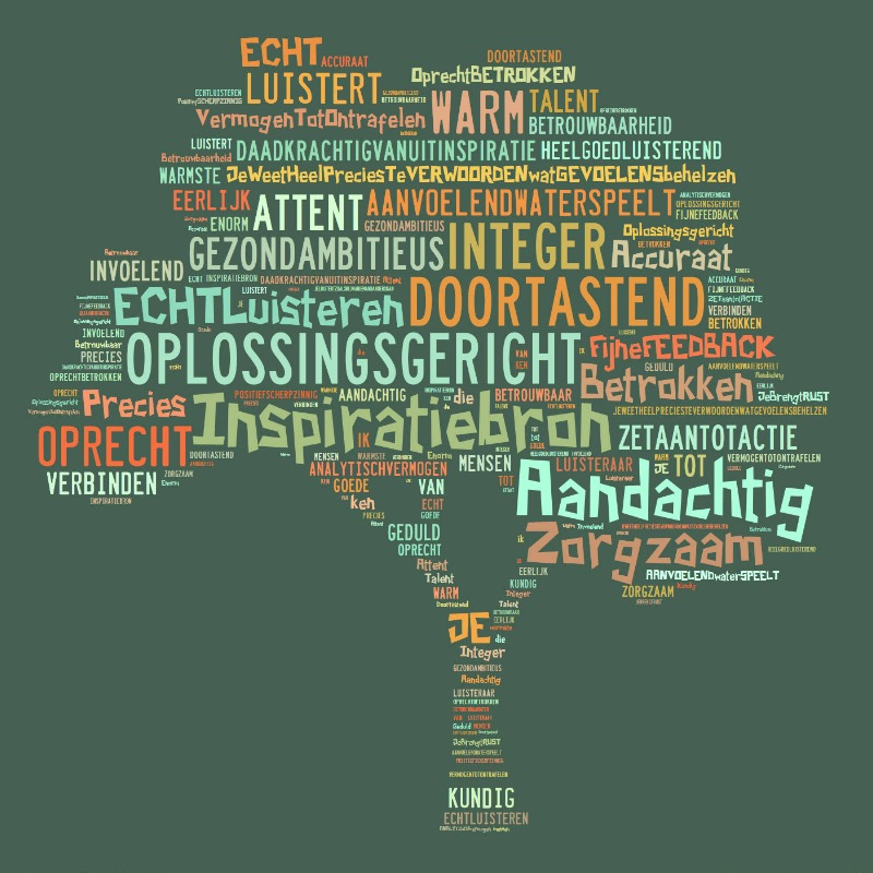 www.financiereninbalans.nl 800x600 wordcloud