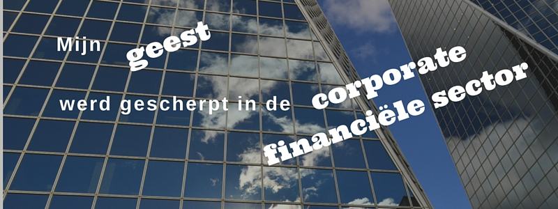 Website www.financiereninbalans.nl foto 800 x 300 met font Ultra pg 28 Helvetica pg 21 vet(7)