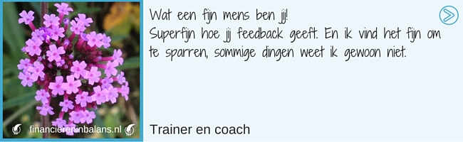 www.financiereninbalans.nl | www/mytristedadvisor.nl | individuele coaching | Familieopstelling | organisatieopstelling