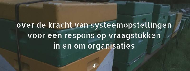 Over de kracht van systeemopstellingen organisaties | Financieren in Balans
